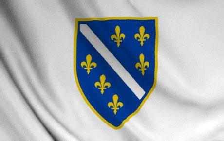Usvojena zastava i grb Republike BiH (1992 - 98)
